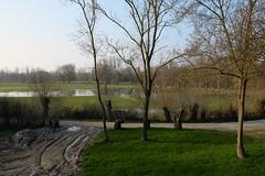 DSCF0597 (kuzdra) Tags: france spring village anjou   dene
