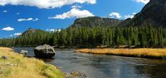 Madison River (RPahre) Tags: autumn fall river pano madison yellowstonenationalpark yellowstone wyoming madisonriver