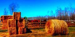 CorKy Ranch along the Dawson Trail in Manitoba (ezigarlick) Tags: ranch horses canada spring manitoba hay bales corral richer dawsonroad dawsontrail corkyranch