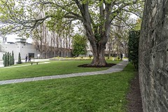 ARBOUR HILL CEMETERY [RESTING PLACE OF 14 EXECUTED 1916 RISING LEADERS]-115430 (infomatique) Tags: cemetery military graves prison irishhistory kilmainham 1916 easterrising arbourhill williammurphy oldgraves infomatique zozimuz leadersofthe1916rising
