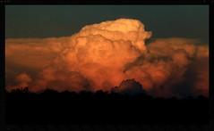 Daydreaming (rachFNQ) Tags: sunset sky clouds skyscape australia kakadu cloudporn northernterritory kakadunationalpark wetseason sunsetporn skyporn