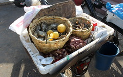 oualidia seafood cart (kexi) Tags: africa stilllife canon march raw fresh lemons morocco maroc seafood oysters cart mussels 2015 maroko instantfave oualidia