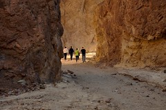 Golden Canyon, Death Valley National Park (faungg's photos) Tags: california travel usa west nature landscape us nationalpark hiking roadtrip trail deathvalley goldencanyon
