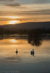 Beeding Brooks (Trojan Wonder) Tags: sunset water reflections downs landscape nationalpark flood south adur