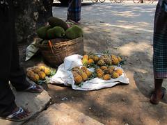 IMG_6999.jpg (Kuruman) Tags: pineapple sylhet bangladesh srimangal