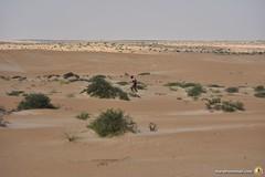 3-Oman-Desert-Marathon-Day-6_7220