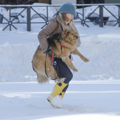 My legs ain't moving! (Tim Brown's Pictures) Tags: winter pets snow dogs washingtondc blizzard timbrown january2016 blizzard2016