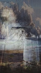 Compilation (darryn.doyle) Tags: new original trees abstract art modern clouds soft chaos doubleexposure abstractart pastel digitalart fresh whatisit textures doubletake hidden whatdoyousee creation together transparency what how why flowing transparent depth retouched digitalmanipulation newage gettingcreative complimentary lookingthrough blendingin lookingin hiddenfaces redefined recreated hiddeninplainsight artisticexpression lookingforward mypointofview lightcolors comingtogether yourtake artisticeye treeandclouds reshapingthoughts darryndoyle