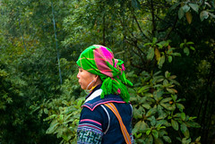 Scarf (jev55) Tags: sky woman field clouds scarf countryside nikon scenery dress rice traditional hill vietnam lanscape sapa