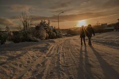golden light (krøllx) Tags: street winter light sunset people sun white snow cold berg norway season landscape sundown streetphotography atmosphere trondheim sørtrøndelag dsc00123201601311
