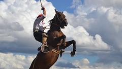 Jineteando en el cielo (Eduardo Amorim) Tags: horses horse southamerica argentina criollo caballo cheval caballos sauce cavalos corrientes pferde cavalli cavallo cavalo gauchos pferd chevaux gaucho amricadosul gacho amriquedusud  gachos  sudamrica suramrica amricadelsur sdamerika crioulo caballoscriollos criollos jineteada  americadelsud gineteada crioulos cavalocrioulo americameridionale caballocriollo eduardoamorim cavaloscrioulos provinciadecorrientes corrientesprovince cavall