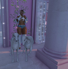 LooK ♥16# (Wredziaa & Fabian50000pl) Tags: pose hair fur necklace fb earring piercing rings bracelet punch infected reign punci ryca taox fwfashion {h}queenz