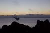 here she comes (rod amaru) Tags: brazil costa brasil clouds sunrise canon coast rocks seagull horizon flight lagoon nuvens lagoa tapes rs riograndedosul pedras garça horizonte vôo nascerdosol 6d 2470mm lagoadospatos costadoce