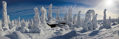 Snowy winter landscape panorama - Riisitunturi by talaakso - Snowy winter landscape panorama. Panorama picture combining 4 shots with Microsoft Image Composite Editor, Lightroom and Photoshop. Riisitunturi, Posio, Finland. 14.3.2016.