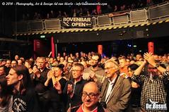 2016 Bosuil-Het publiek bij The Paladins en Cats on the Corner 11