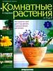 Комнатные и садовые растения от А до Я 2014 01