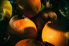 Oranges (imagomagia) Tags: light abstract black art composition experimental shadows doubleexposure creative experiment naturallight multipleexposure oranges nophotoshop fineartphotography studie artphoto foodphotography artphotography colorimage stilllifephotography abstractphotography orangecolour colourimage artabstract
