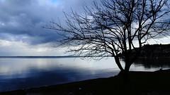 Μενιδι Αμφιλοχιας DSC00672 (omirou56) Tags: sea reflection tree clouds greece 169 θαλασσα ελλαδα αντανακλαση δεντρο συννεφα sonydscwx500 μενιδιαμφιλοχιασ