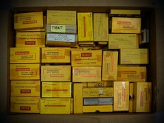 Museum Adventures (Mike Peckett Images) Tags: museum oxford scanning oxfordshire photgraphy pittrivers pittriversmuseum pittriversmuseumoxford mikepeckett
