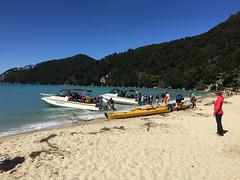 Abel Tasman National Park (Zachary Bailey) Tags: newzealand nz tasman abeltasmannationalpark