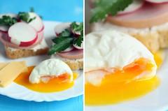Breakfast #2 (I_Nneska) Tags: cheese bread egg sausage sandwich parsley radish cottagecheese