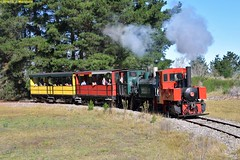 DS_Train_7_McLeansIsland_09April2016 (nzsteam) Tags: price train island traction engine railway scene steam engines locomotive boiler boilers mcleans sawmilling