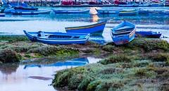 Les barques de Bouregreg - Rabat (Bouhsina Photography) Tags: blue light reflection water colors port marina canon river puerto boat eau lumire rivire bleu reflet morocco maroc soir couleur barque rabat fleuve oued oudaya bouregreg bouhsina ef7020028ii 5diii bouhsinaphotography