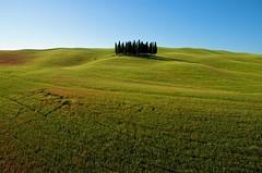 Oasi in Valdorcia (daniloinnocenti) Tags: tuscany cypresses magicpanorama