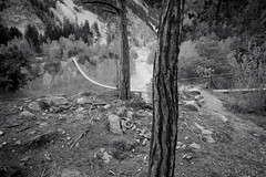 Illgraben & Bhutanbrcke (VS) (Toni_V) Tags: leica bridge bw monochrome schweiz switzerland blackwhite europe dof suisse bokeh hiking rangefinder mp svizzera schwarzweiss suspensionbridge wallis valais wanderung randonne 21mm hngebrcke 2016 svizra sep2 leicam pfynwald illgraben digitalrangefinder niksoftware messsucher 160416 superelmarm silverefexpro2 type240 typ240 bhutanbrcke toniv m2404369 naturparkpfynfinges