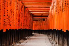 Red Doors (MorelLand) Tags: red japan canon temple eos kyoto gate doors inari gates fox porta porte rosso torii giappone fushimi tempio 500d volpi