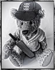 Freddie Flintoff HSS 94/366 (cheltenhamgirl (Yvonne)) Tags: cricket teddybear slidersunday