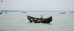 Catching fish from Sea (amrantex160) Tags: ocean sea fish fisherman boatman