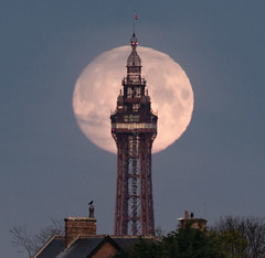 Moonset Blackpool Tower (Starman_1969) Tags: moon tower full 500mm blackpool gibbous moonset waxing staining