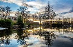 lagoon... (ma_rohe) Tags: reflection puddle lagoon puddles reflejos reflects
