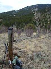 Spring Turkey Hunt 2016 (berryns1) Tags: hunting binoculars shotgun ruger zeissdialytrandallknifeprimoscoloradoturkey