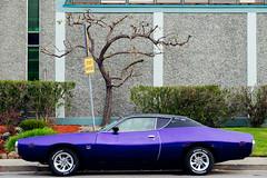 Stop Ahead (Jeremy Brooks) Tags: california usa car vintage purple marincounty sanrafael charger camera:make=fujifilm camera:make=fuji camera:model=xpro1