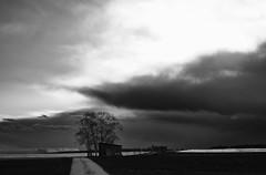 Becoming dark (Vitatrix) Tags: bw abend outdoor felder wolken badenwrttemberg schwarzweis