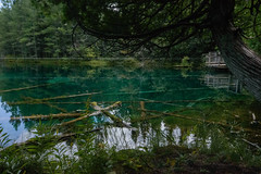 Kitch-iti-kipi bank dock (jess_clifton) Tags: aqua upperpeninsula clearwater kitchitikipi movingdock kitchitikipispring