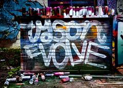 abandoned factory breukelen (wojofoto) Tags: holland graffiti tyson nederland netherland cans evolve breukelen wolfgangjosten wojofoto