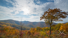Skyline Drive, Virginia Panorama (Mike Ver Sprill - Milky Way Mike) Tags: park autumn trees sunset panorama orange cloud sun mountain mountains green fall mike beautiful leaves yellow skyline clouds sunrise landscape drive virginia michael amazing nikon colorful seasons outdoor pano hill foliage changing national va mountainside np shenandoah ver d800 foothill 1424 shanandoah sprill versprill