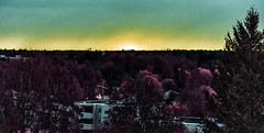 Sunrise in May 2015 (ri Sa) Tags: trees sky sunrise buildings finland helsinki pihlajamki