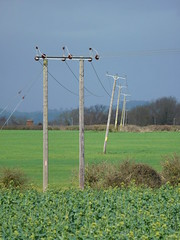 Leaning Lecky (stevenbrandist) Tags: green field countryside leicestershire electricity poles leaning transmission lean birstall