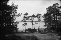 2016-April-23th_Porkkala_Yashica-Electro_018 (Tatu Korhonen) Tags: finland kirkkonummi porkkala fomapan400 yashicaelectro35professional yashinondx1745mm adoxatomal49