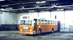 Slide 056-58 (Steve Guess) Tags: uk red england bus bristol hampshire gb re provincial ecw rell hants dualpurpose hantsdorset nlj829g