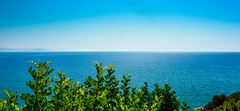 Endless Blue (free3yourmind) Tags: blue trees sea leaf horizon greece endless