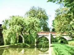Calm Waters (Steve Taylor (Photography)) Tags: uk greatbritain bridge england brown white lake reflection tree green london art water sunshine wall architecture digital branch unitedkingdom sunny palace calm willow gb moat weepingwillow weeping eltham