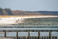 Zingst - Ostsee, Buhnen und Strand (www.nbfotos.de) Tags: strand balticsea ostsee darss zingst wellenbrecher buhnen