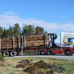 Scania R620 V8 thumbnail