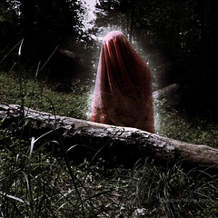 She Mourned for the Trees (Darling Ashes) Tags: trees red woman selfportrait tree nature composition dark dead outside outdoors death exposure sad veil mourning spirit magic ghost selfportraits morbid depression conceptual activism capture morose grief