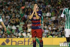 Betis - Barcelona 095 (VAVEL Espaa (www.vavel.com)) Tags: fotos bara rbb fcb betis 2016 fotogaleria vavel futbolclubbarcelona primeradivision realbetisbalompie ligabbva luissuarez betisvavel barcelonavavel fotosvavel juanignaciolechuga